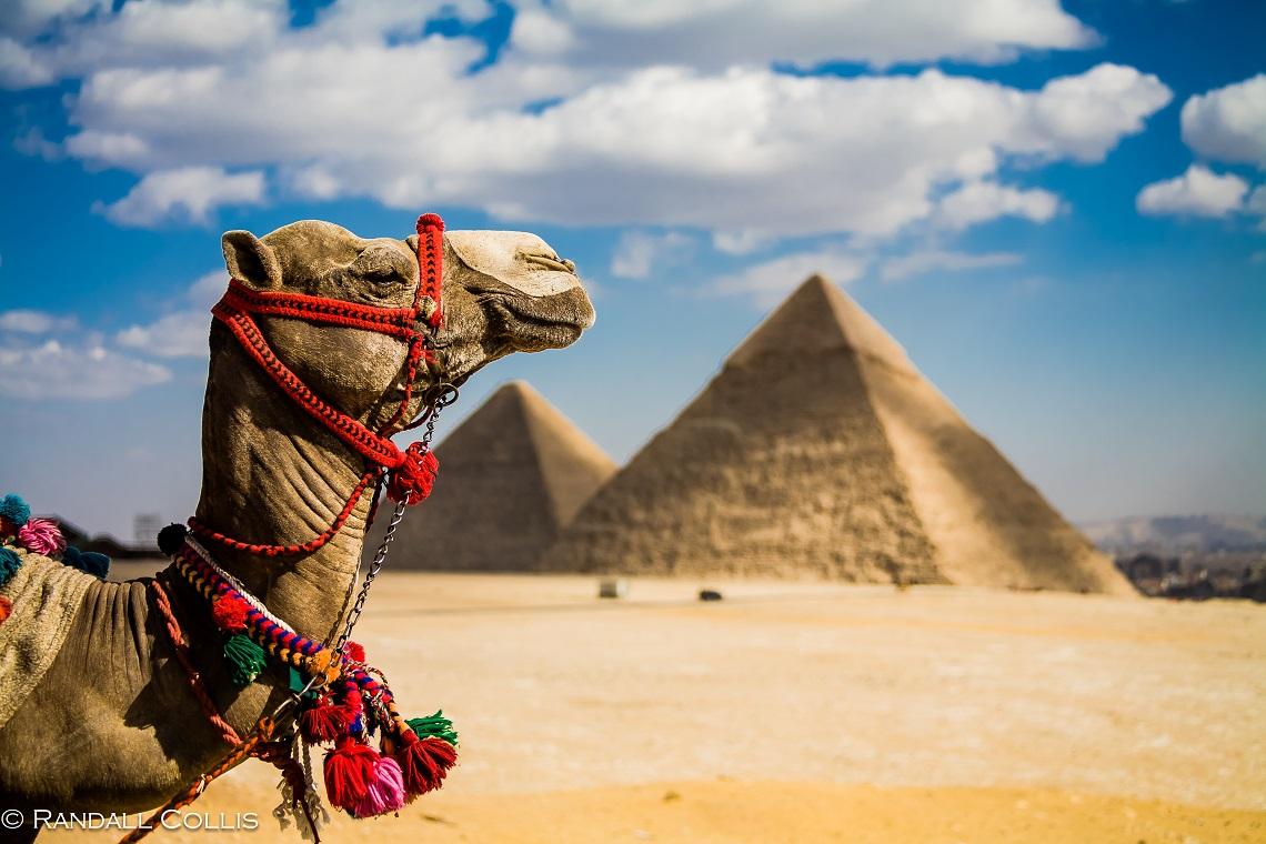 Cairo To Giza Tour